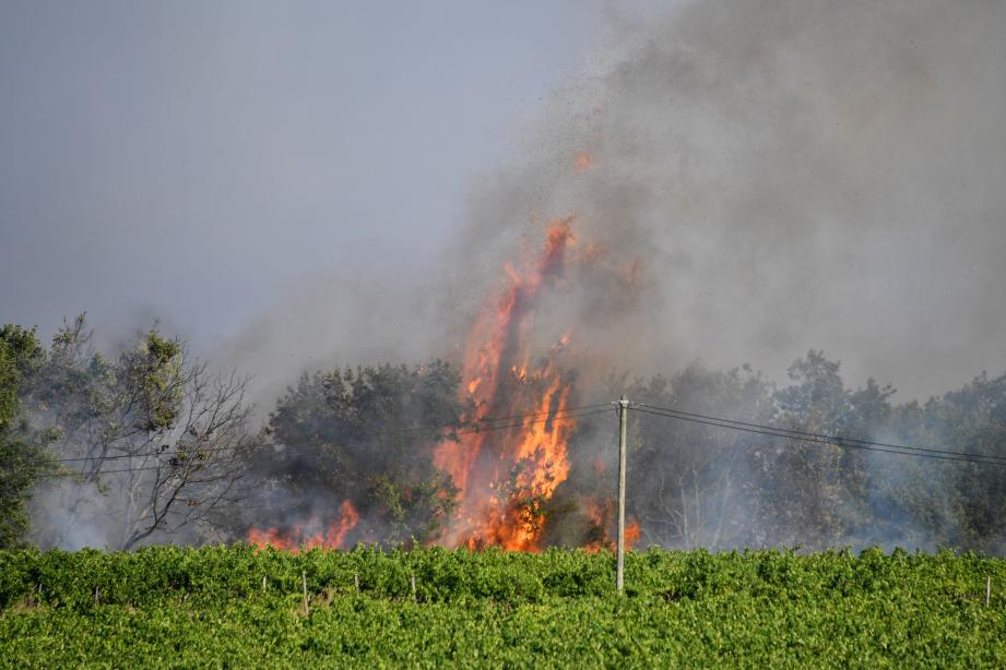 Le pilote d'un bombardier d'eau a perdu la vie vendredi dans le crash de son appareil, engagé dans la lutte contre les incendies à Générac (Gard) où près de 700 hectares de bois, de garrigues et de vignes ont brûlé depuis mardi.