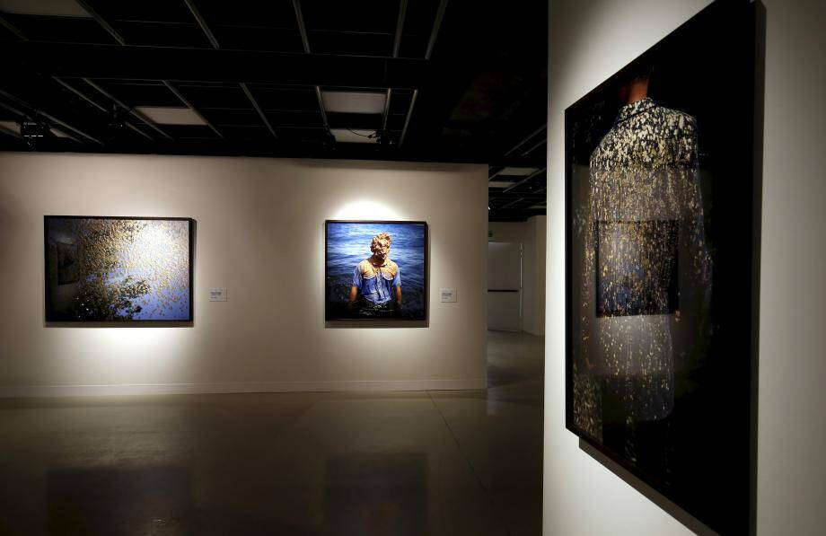 Le travail de Michel François, avec son arbre doté d'un regard, qui emplit toute une pièce de l'exposition.