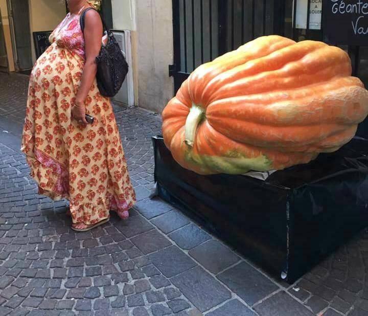 La courge de 304 kg exactement crée l'attraction à Vence. Sophie et Stéphane de Vence Eco essaient d'animer cette rue si typique du Marché du cœur de Vence. (DR)