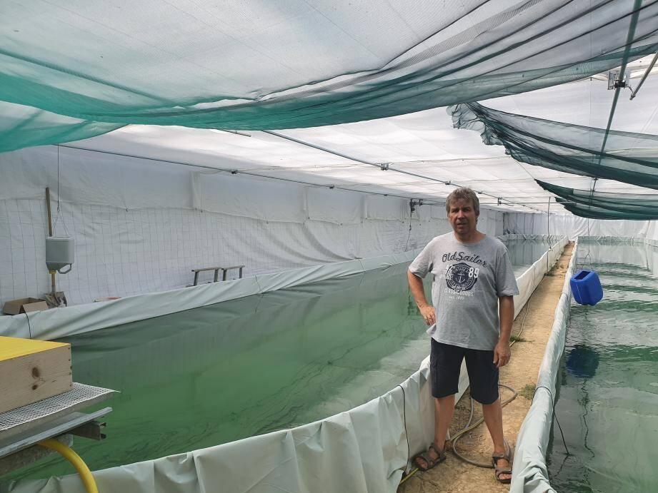 Chez Nuccio Garoscio, la spiruline est produite dans deux bassins d'aquaculture en serre avant d'être transformée en spaghetti et broyée sous forme de copeaux pour être vendue.