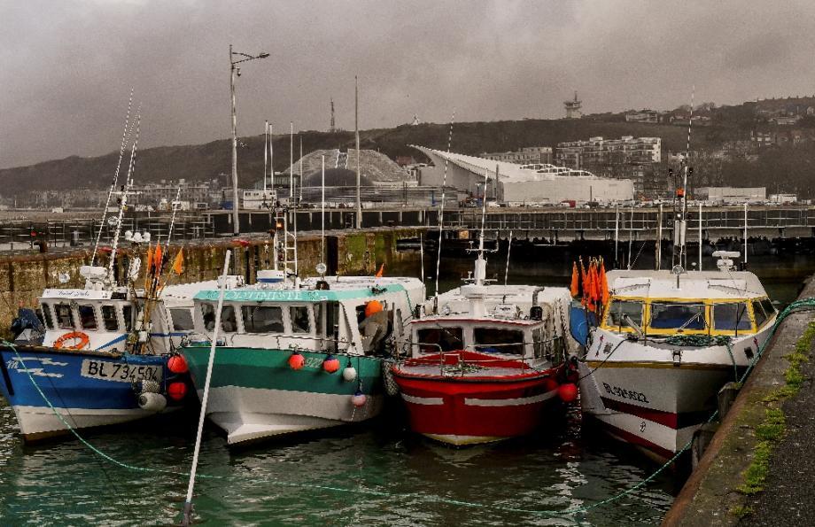 Des bateaux de pêche dans le port de Boulogne sur Mer le 25 janvier 2019