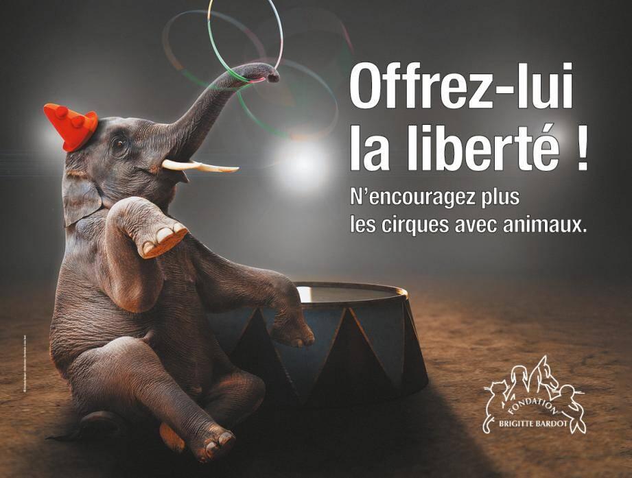 En France, 360 communes ont déjà pris position pour des cirques sans animaux. Ci-dessus, l'affiche que l'on peut découvrir à Fréjus et Saint-Raphaël.