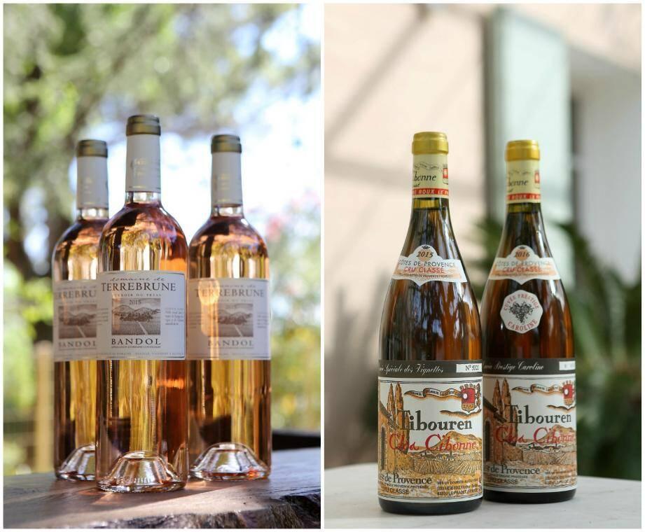 Le Guide des meilleurs vins 2020 a consacré le domaine de Terrebrune, à Ollioules, et le Clos Cibonne au Pradet.