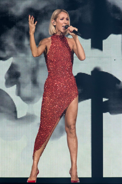 Le 18 septembre dernier, au centre Videtron à Québec, Céline Dion a donné le coup d'envoi de sa tournée mondiale, Courage World Tour, qui l'emmènera en Principauté dans neuf mois.