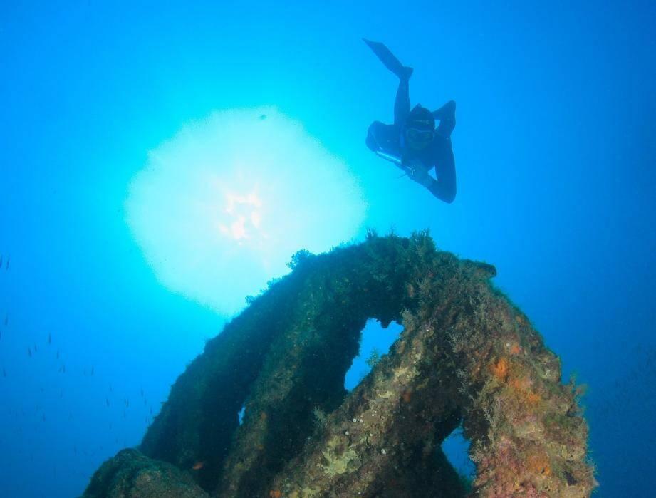 Pour pêcheurs et chasseurs sous-marins, les zones rocheuses sont devenues précieuses. D'ici à demain, la querelle va-t-elle se finir en queue de poisson ?
