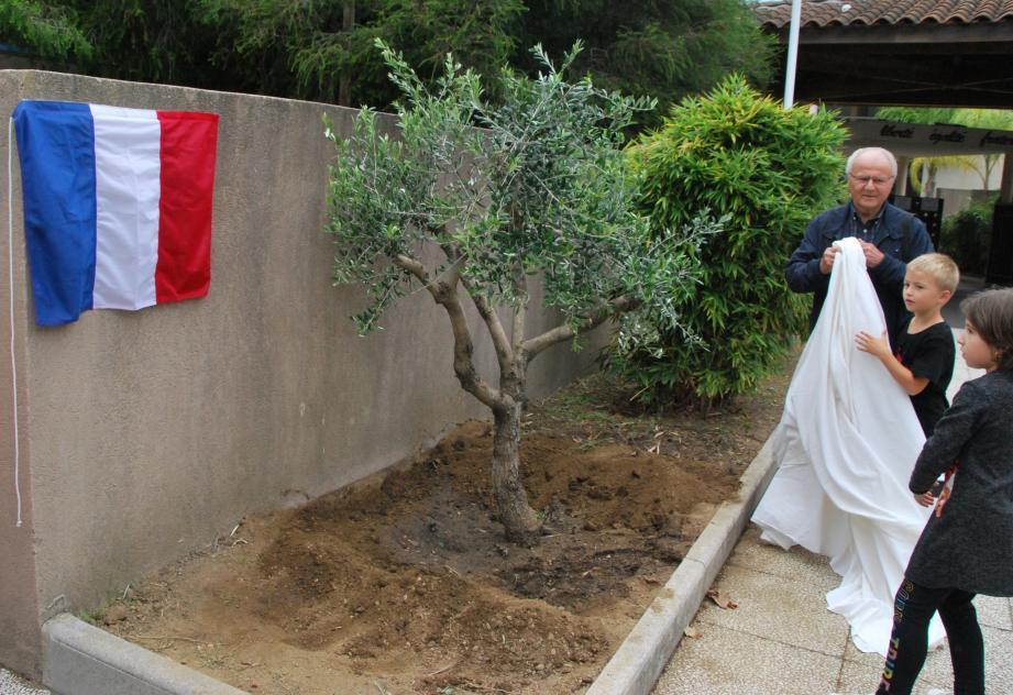 Les enfants ont découvert l'olivier avec Gilbert Ghio délégué départemental de l'éducation nationale de l'école primaire.