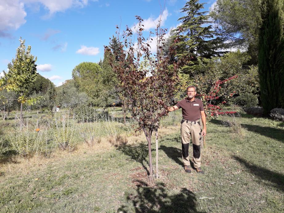 Frédéric Denizet, un fervent partisan de la permaculture qui viendra en exposer les avantages en termes de rendements et de respect des biotopes. Vraiment passionnant !