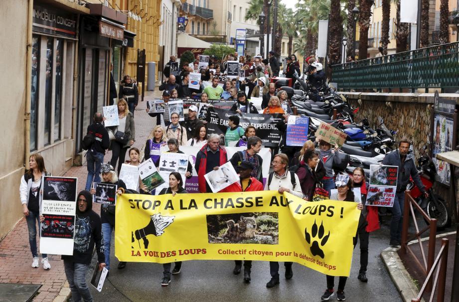 Plusieurs associations ont répondu à l'appel du collectif citoyens La Voix des Loups pour venir manifester à Grasse.