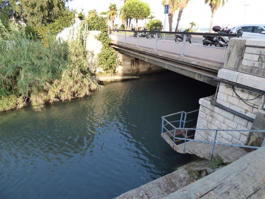 Le fleuve Cagne.