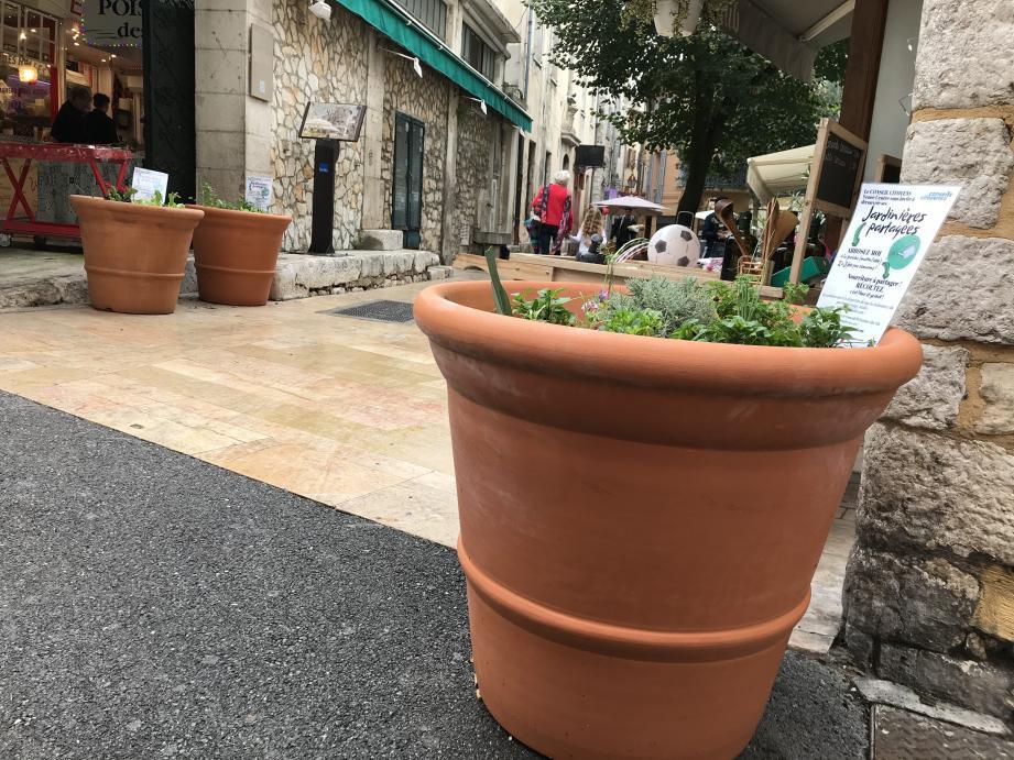 Une quinzaine de jardinières ont été disposées à plusieurs endroits de la vieille ville.