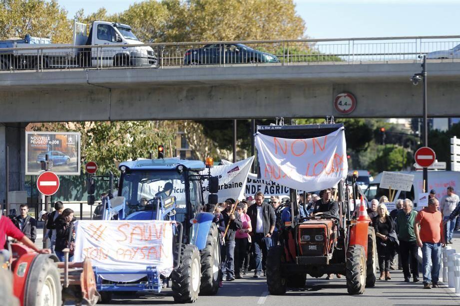 Les agriculteurs en colère, hier, sur le chemin de la préfecture.