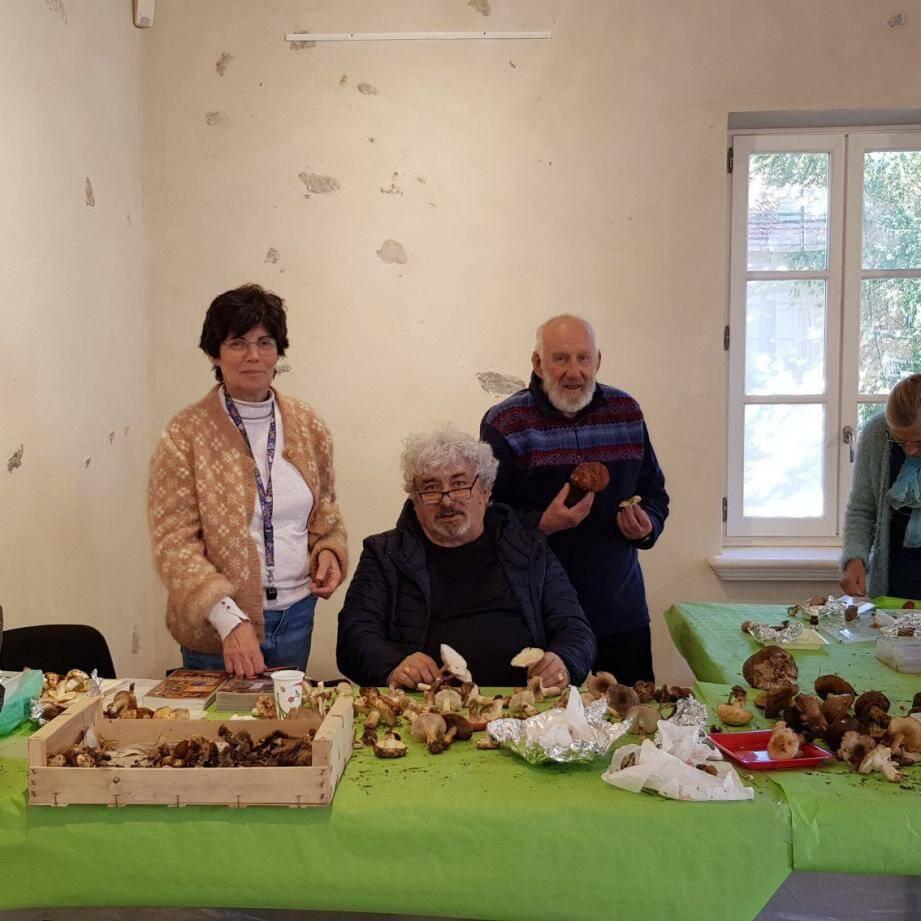 J.-C Hermitte, mycologue, (au centre) teste les champignons entourée de Christine Valence responsable de la section mycologie de la Société des sciences natuelles et d'archéologie du Var et un bénévole de l'association.