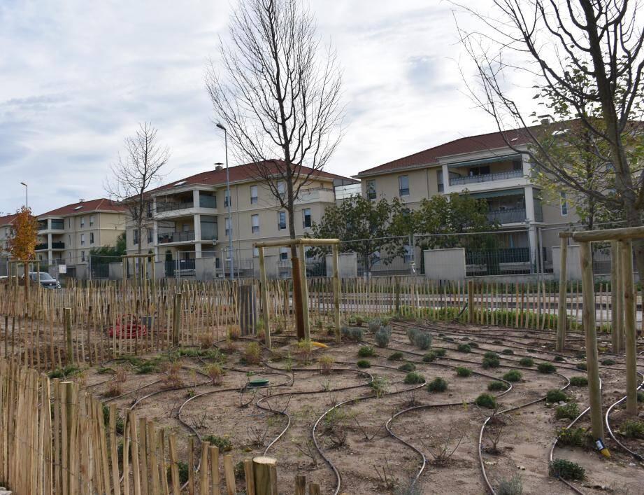 Des espaces verts ont été plantés tout au long du cheminement, avec 25 essences méditerranéennes différentes et une centaine d'arbres.
