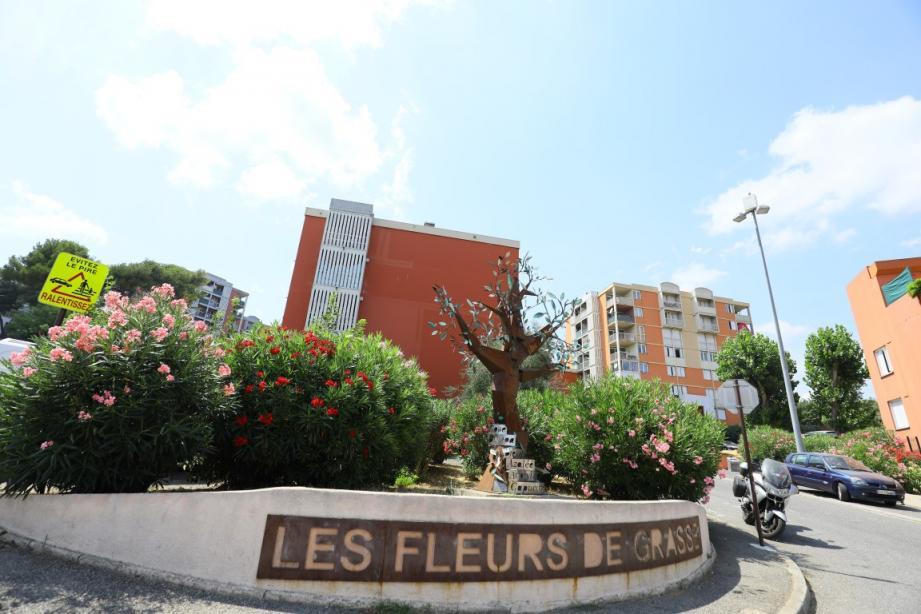 """La résidence """"Les Fleurs de Grasse"""" a vécu une soirée de violence entre des individus cagoulés et la police, lundi."""