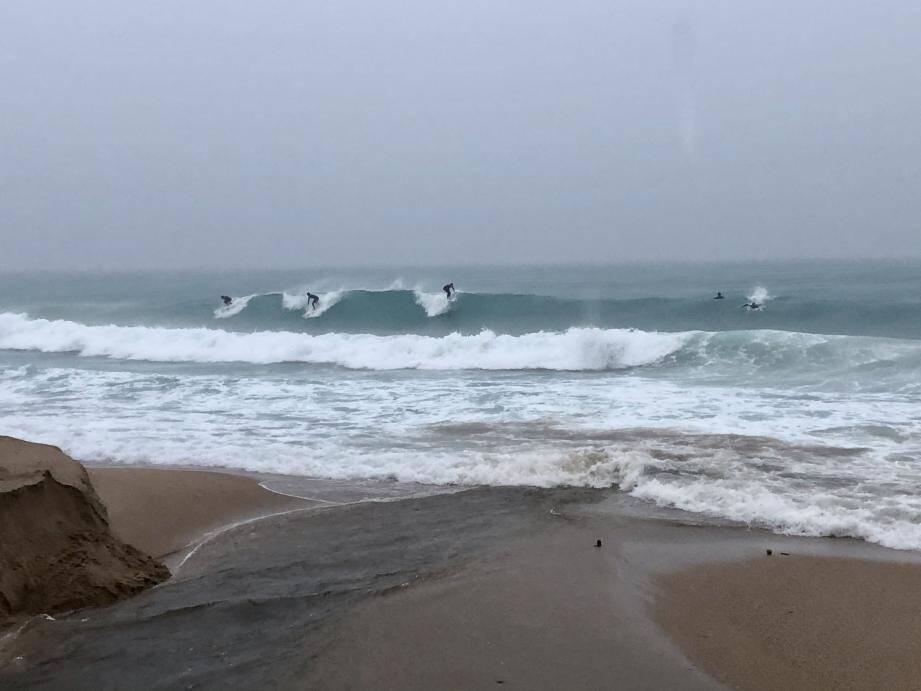 Une cinquantaine de surfeurs a bravé la vigilance rouge, dimanche 1er décembre, pour profiter des vagues le long du boulevard du Midi, à Cannes.