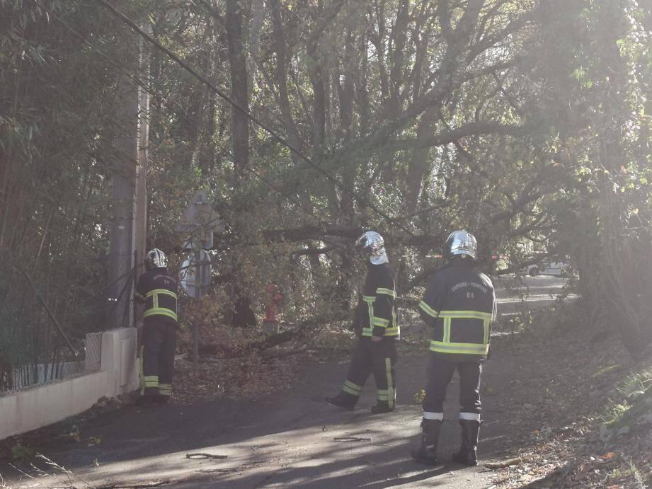 Un arbre a emporté des fils électriques chemin du Taméyé ce dimanche matin à Opio. Deux lignes à terre : Enedis et éclairage public.