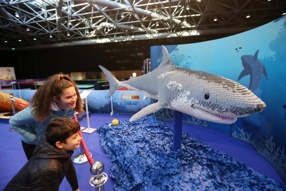 L'espace dédié aux océans, chers au prince Albert II,  est l'une des nouveautés de cette deuxième édition.