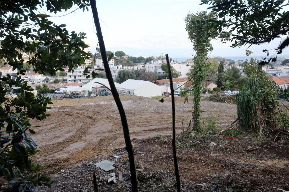 De l'impasse des Alpes, au pied de la cité du Roi Soleil, quelque 8.000m² de surface de construction sont prévues jusqu'en contrebas, sur une partie du parc du château Salé, où les anciennes pépinières municipales étaient installées.