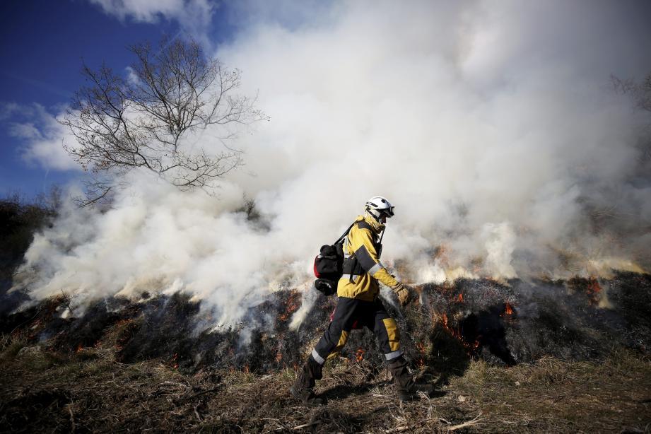Une opération de brûlage dirigé sur les hauteurs de Tourrettes-sur-Loup, en janvier.