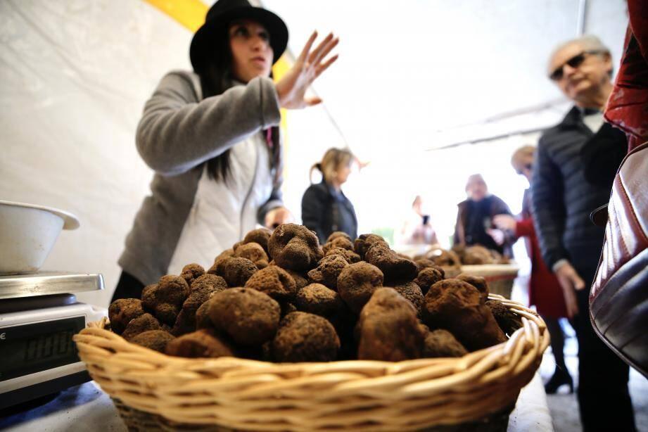 Cette année, la truffe se négocie autour de 1.200 euros le kilo.