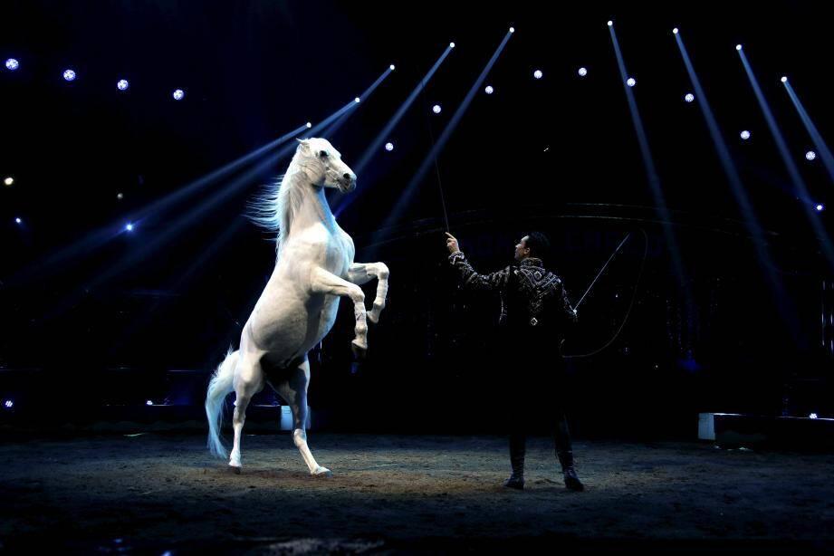 Ils auront marqué ce mois du cirque : la famille Knie empoche un Junior d'or pour ses jeunes représentants : Ivan Frédéric et Chanel.