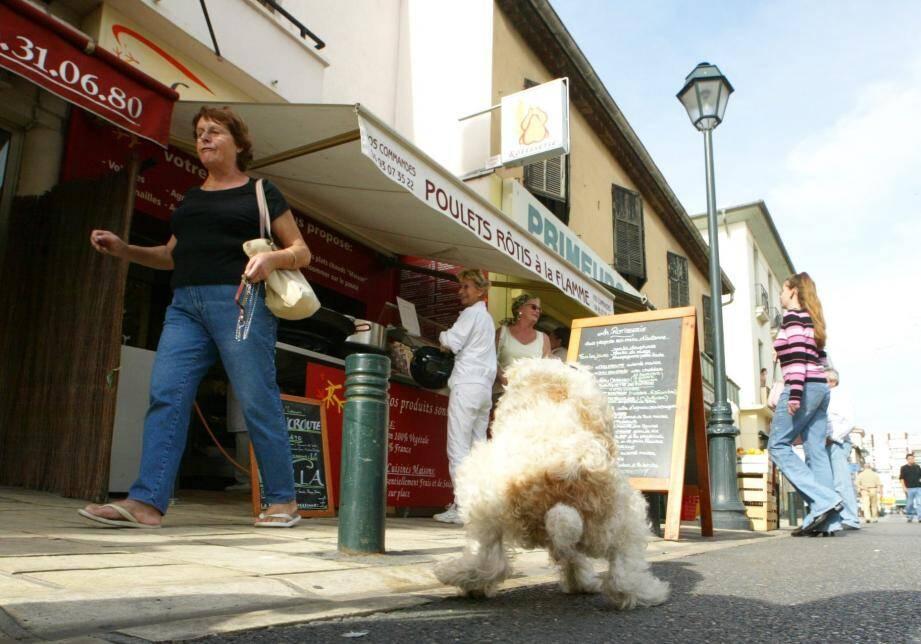 À Nice, on ne dénombre pas moins de 5 000 chiens, contre 8 000 à Paris.