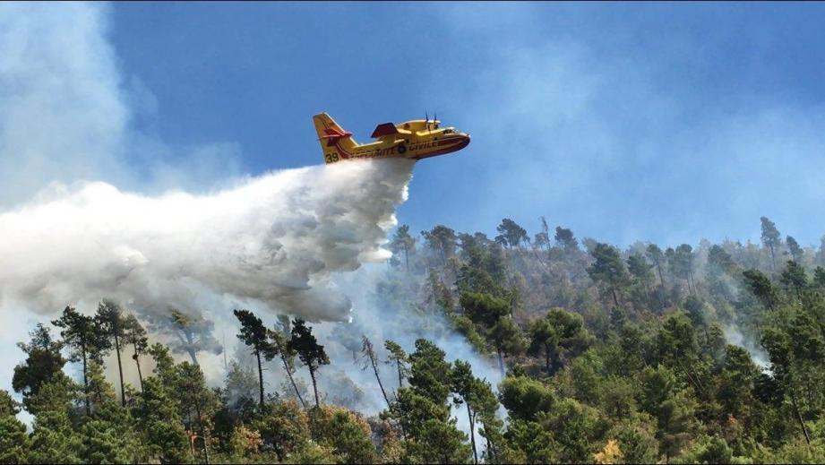 Quatre Canadair ont été déployés pour venir à bout de l'incendie (illustration).