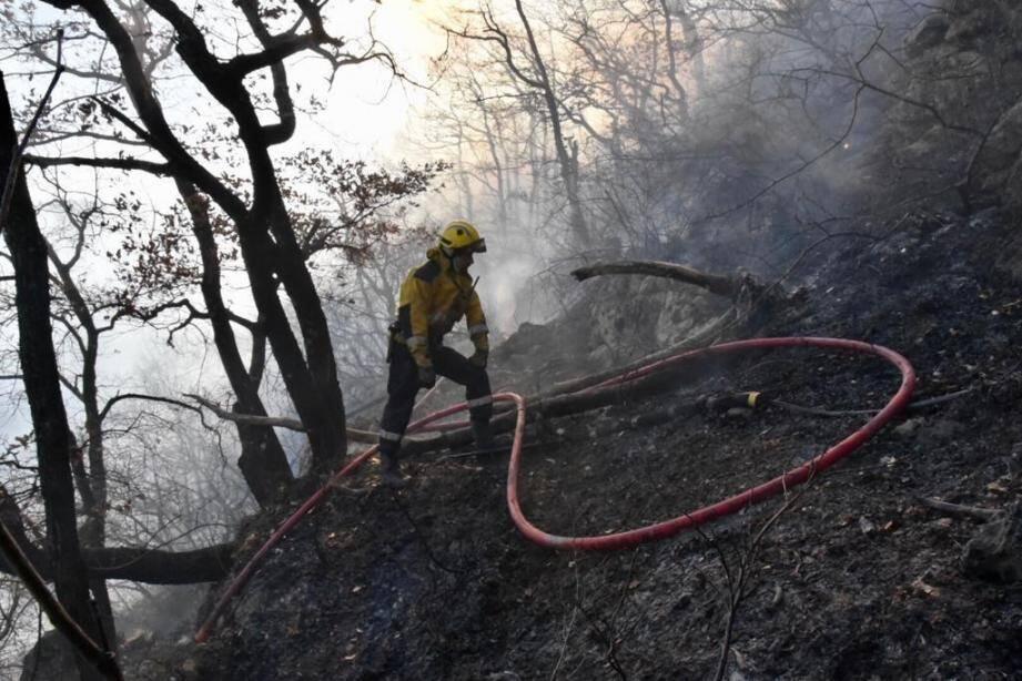 Le feu a ravagé deux hectares à Bouyon.