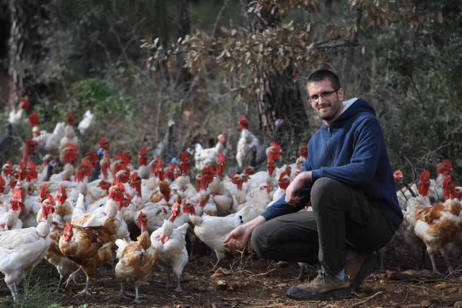 Jean-Bernard Julian élève 1800 volailles de chair et des poules pondeuses à Brignoles.