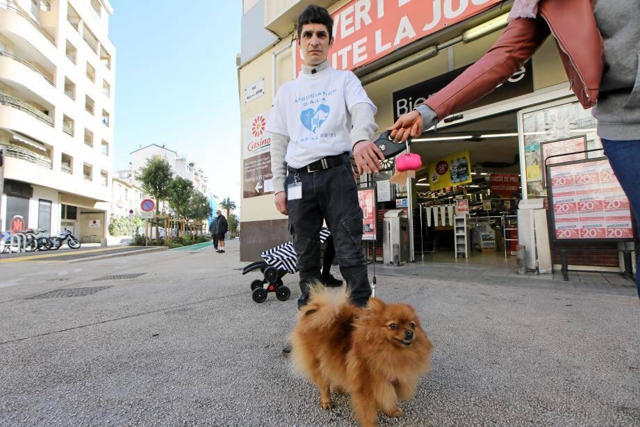 La maîtresse d'Olly peut faire ses courses en toute sérénité au supermarché : Frédéric garde le petit chien, le temps des commissions.