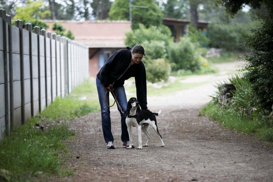 Le groupe « Urgence Anti Abandon » se propose, notamment, de centraliser les échanges entre propriétaires, associatifs et bénévoles pour prévenir une éventuelle vague d'abandons des animaux de compagnie.