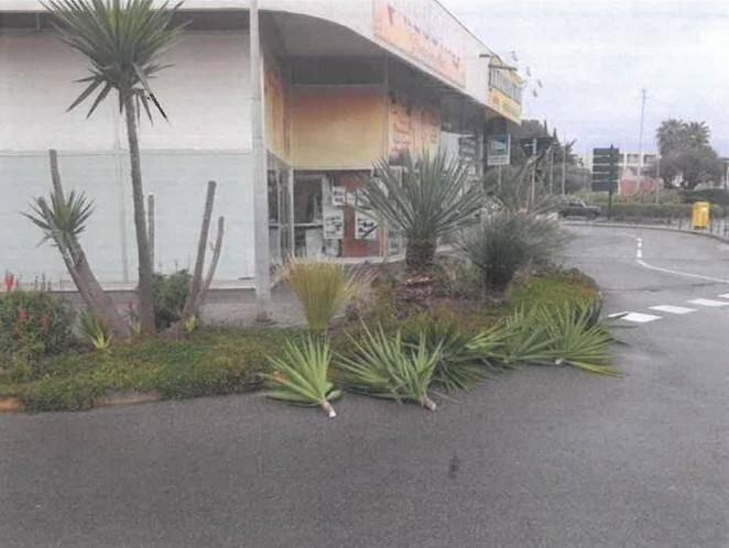 Au total, ce sont une vingtaine d'arbustes qui ont été endommagés.
