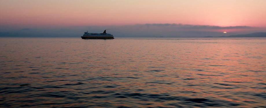 Quatre passagers sont décédés sur le bateau de croisière (image d'illustration) où sont confinés ces Niçois.