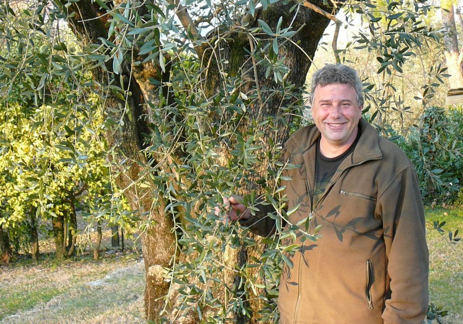 J.-P. Frère dans son olivaie du Rouret.