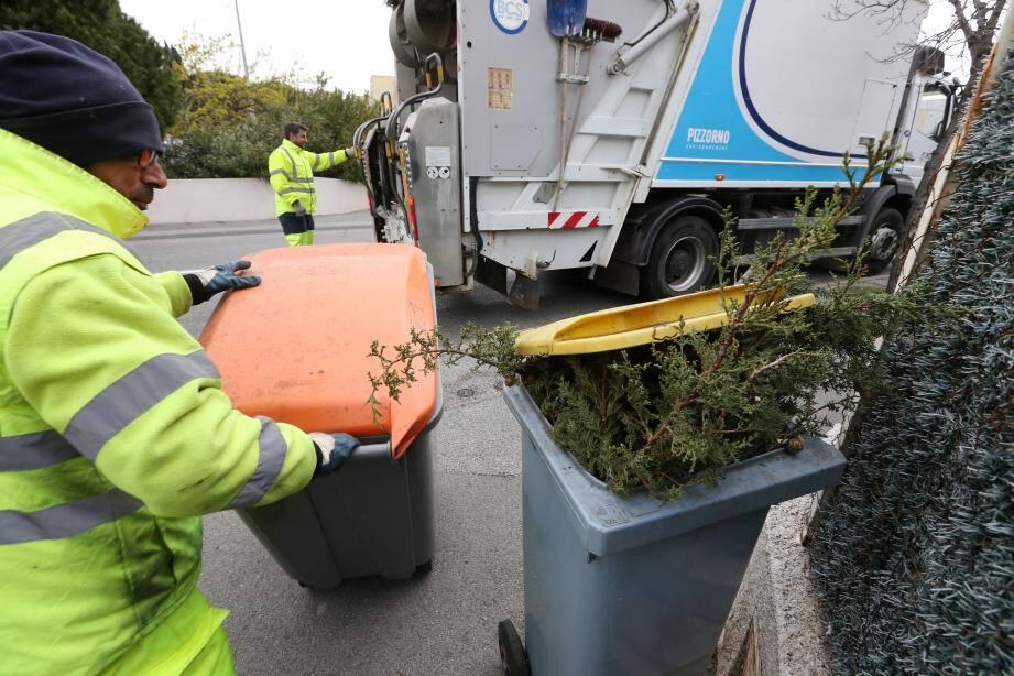 Une collecte de déchets verts. Illustration.