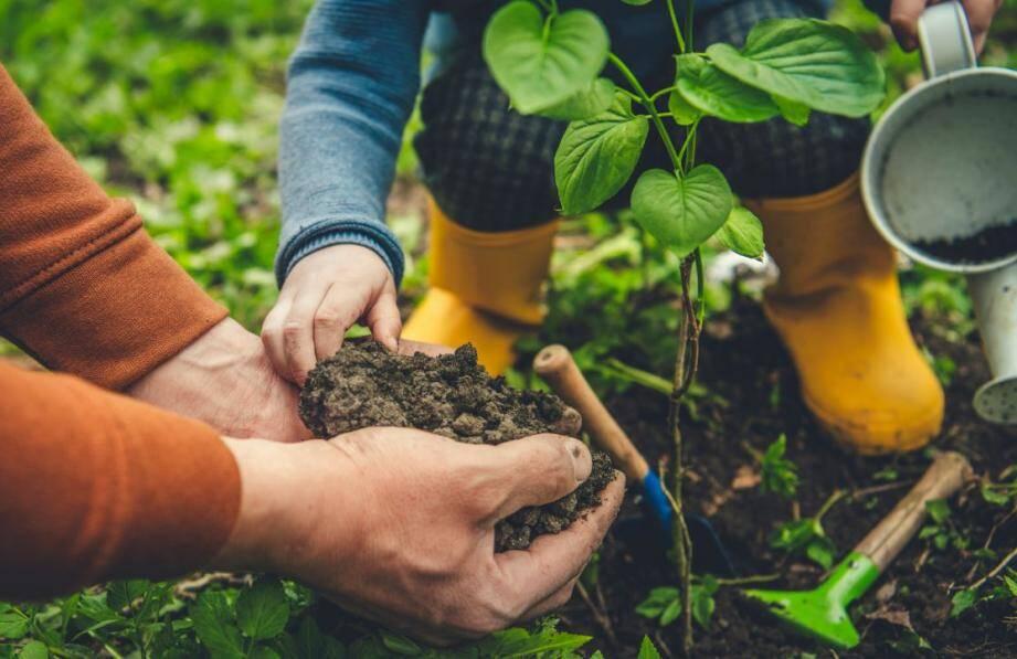 Agissez maintenant si vous devez planter dans votre jardin car l'arrivée des grosses chaleurs est pour bientôt.