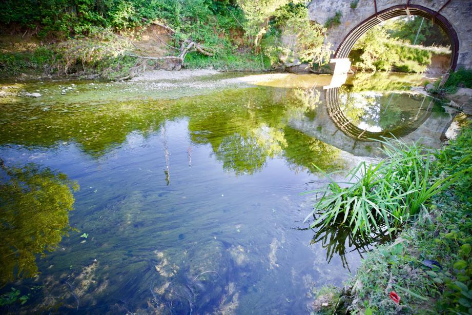 Les eaux usées riches en phosphates et nitrates seraient à l'origine d'une prolifération anormale d'algues dans la Brague.