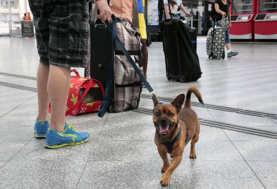 Des passagers à la gare de Lyon à Paris, le 4 juillet 2015