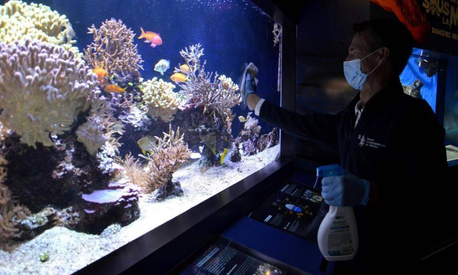 Réouverture du musée océanographique à Monaco, après plus de deux mois de fermeture en raison du Covid-19.