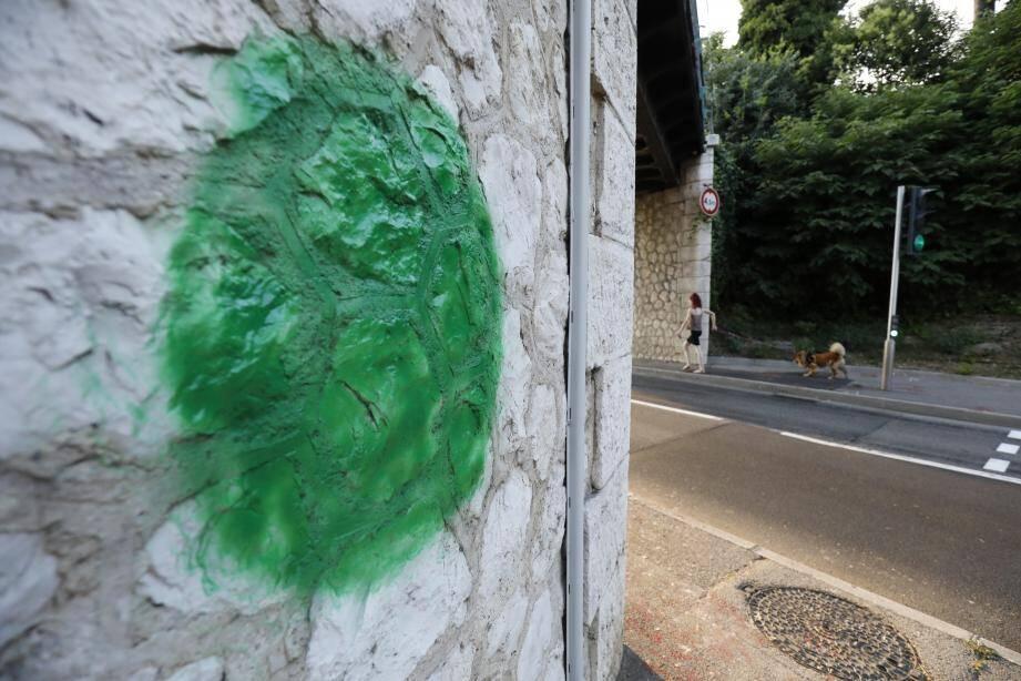 """Derrière ces tags verts: le Conseil national de transition. Un collectif, jugé proche de la sphère complotiste, qui souhaite """"une transition citoyenne durant laquelle tous les Français seront les dirigeants du pays""""."""