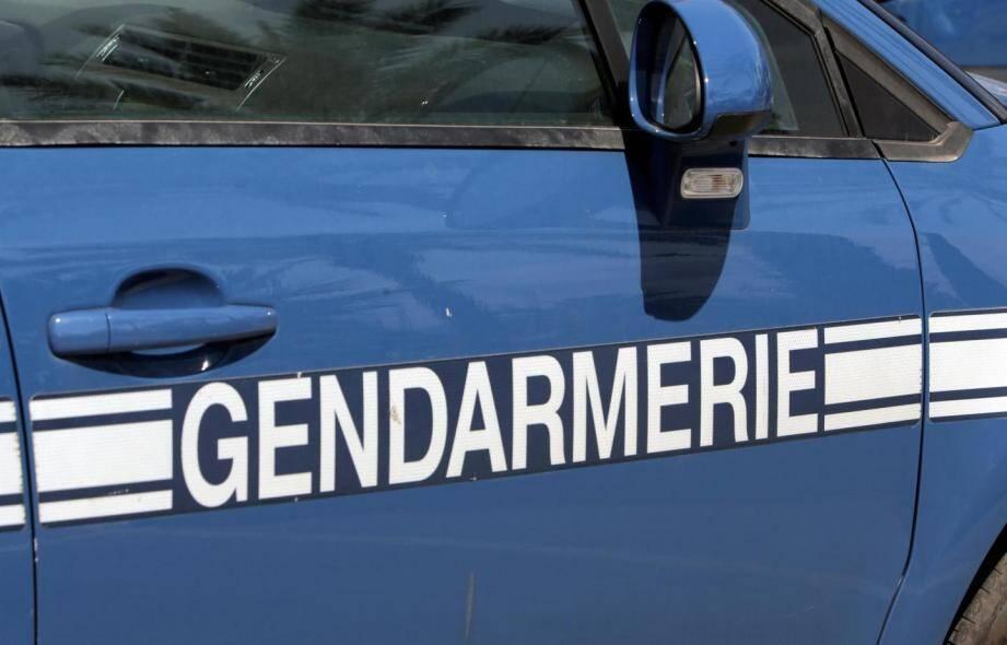 Un chien, un drone, des chevaux: les gendarmes ont déployé un important dispositif.