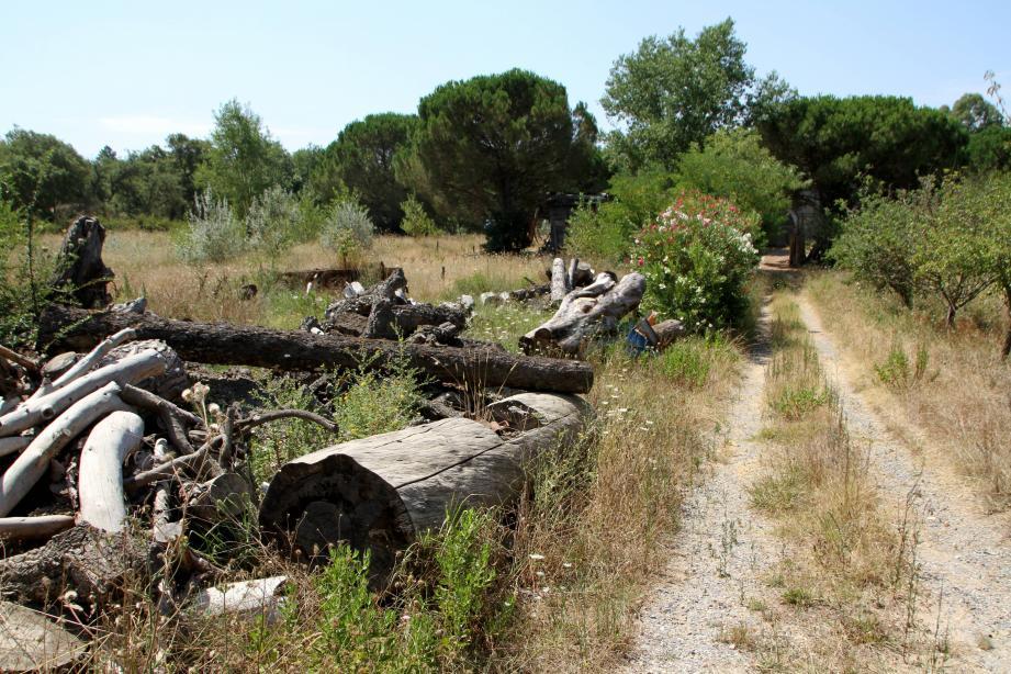 Le terrain Allard, qui va être acquis par la ville aux Pasquiers.