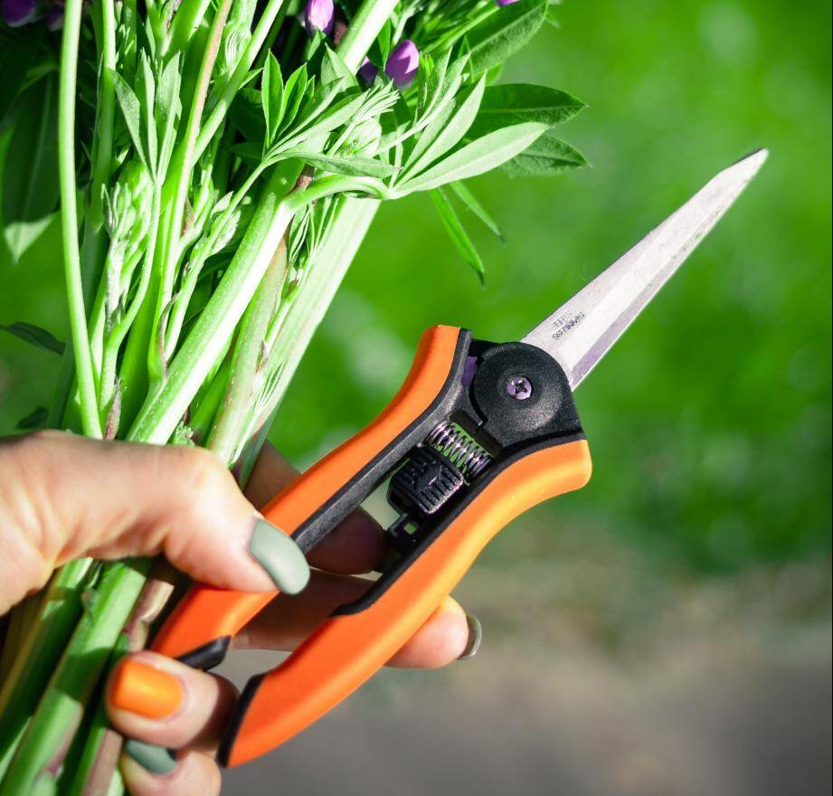 Les activités telles que le jardinage peuvent être dangereuses. Si vous vous blessez, consultez !