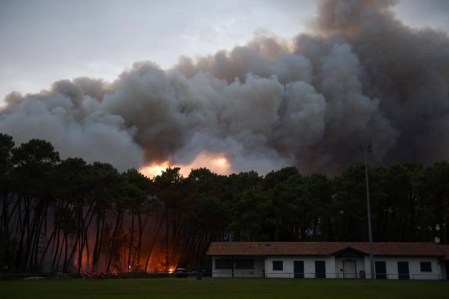 La foret de Chiberta à Anglet, attaquée par le feu le 30 juillet 2020