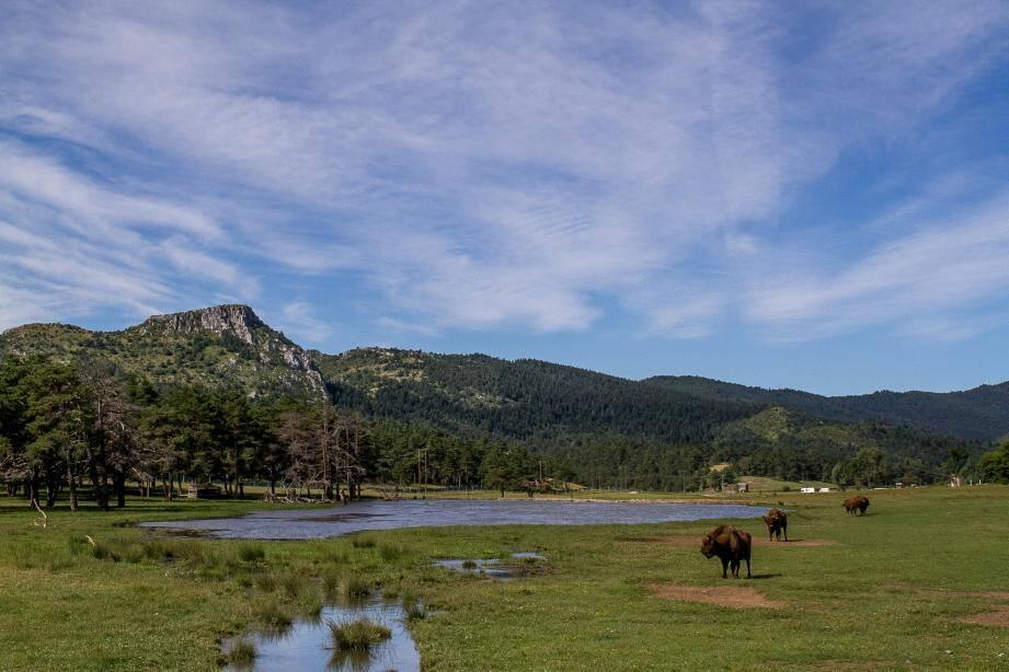Au cœur du parc naturel régional des Préalpes d'Azur.