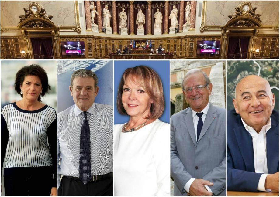 Dominique Estrosi-Sassone, Henri Leroy, Colette Giudicelli, Jean-Pierre Leleux et Marc Daunis, les sénateurs sortants.