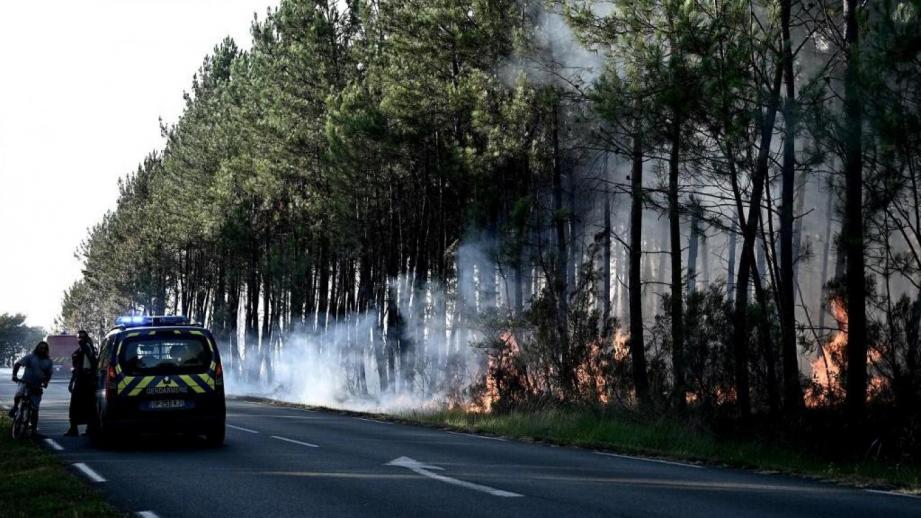 C'est le feu de forêt le plus important de l'année en Gironde à ce jour.