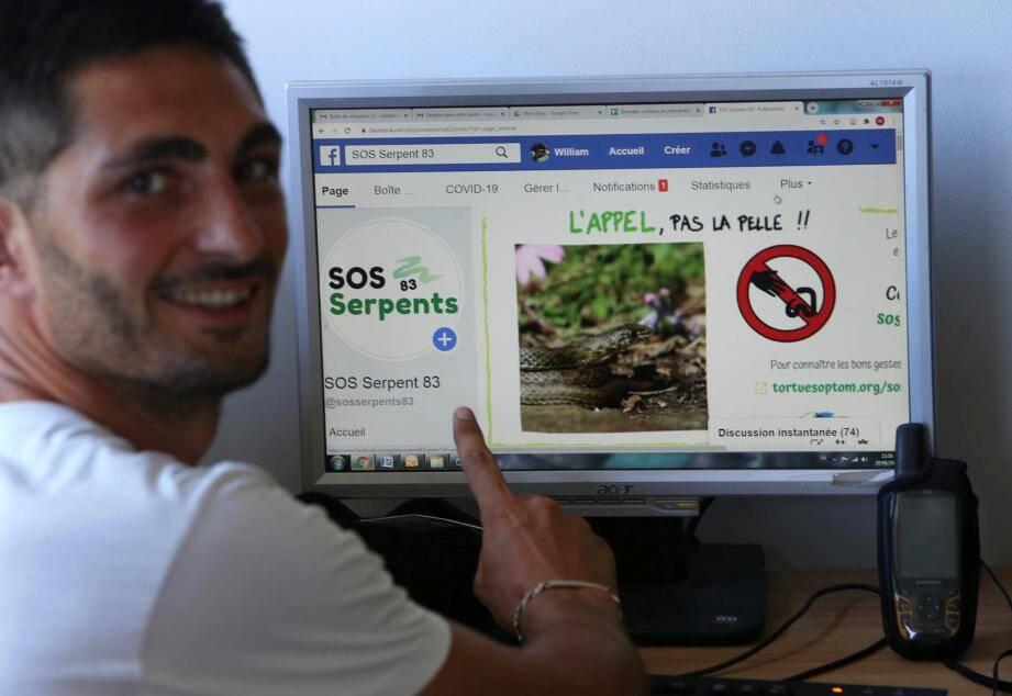 « Les serpents sont craintifs », rappelle William Caudron, de SOS serpents 83. Le but de la plateforme est de vous aider à mieux les connaître et les protéger.