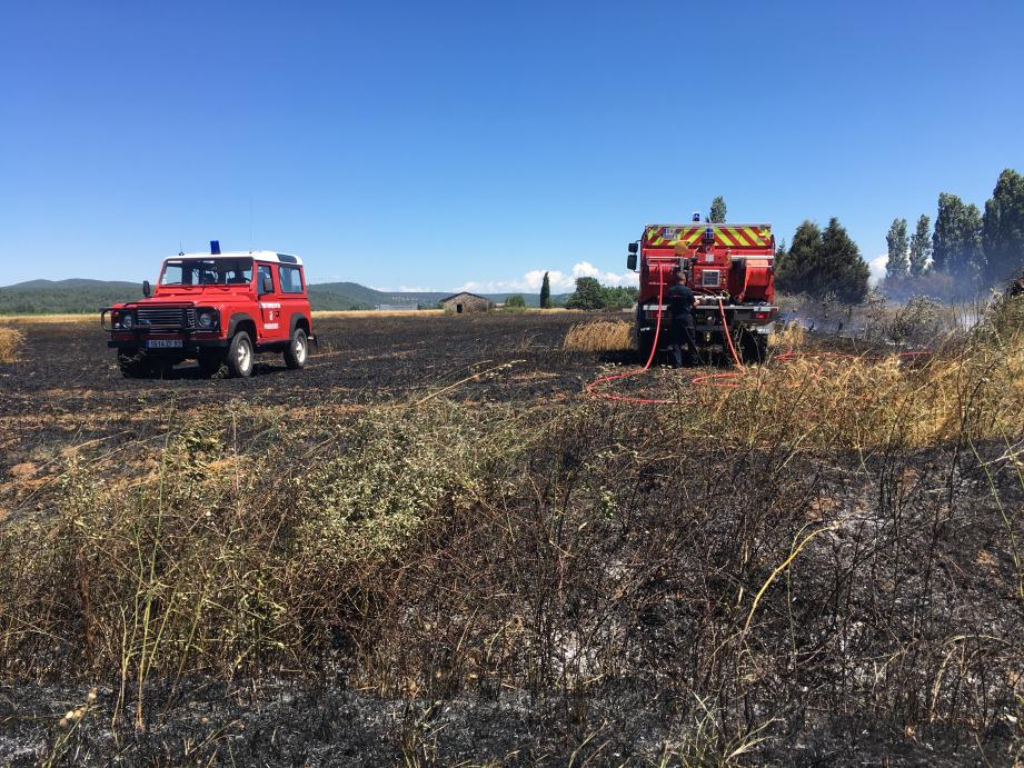 Les flammes ont ravagé 1,5 hectare.