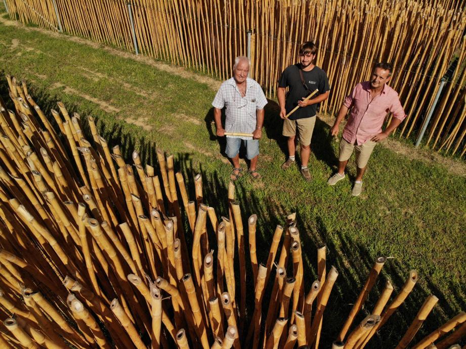 Trois générations incarnent l'histoire de cette fabrique artisanale d'anches à Cogolin